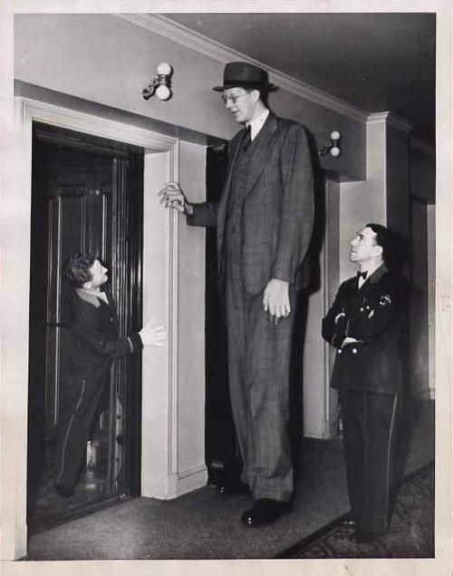 robert wadlow tallest man ever travalanche