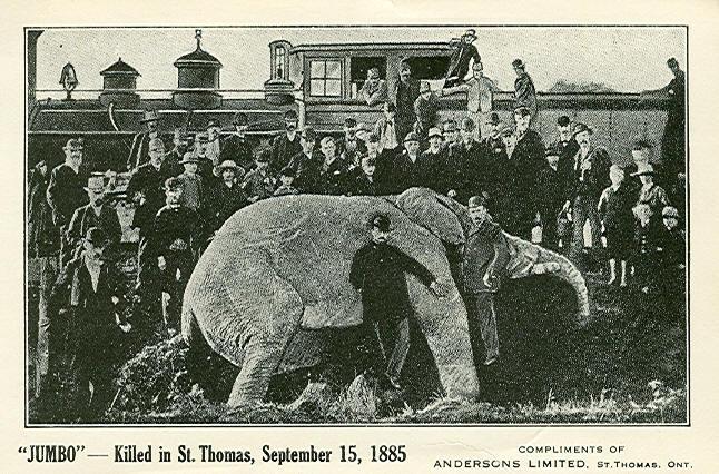 Jumbo's_death,_1885