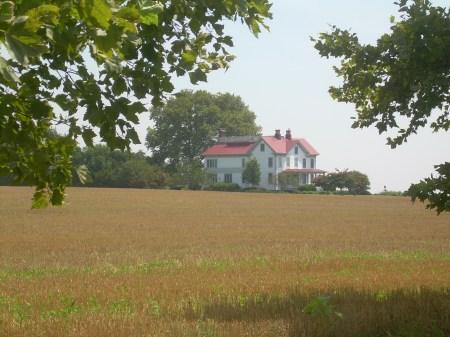 Swan-Point-Farm-2